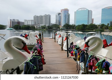 ORLANDO, FLORIDA, USA - JUNE:  Swan paddle boats for rent at Lake Eola Park.  Lake Eola Park is located in the heart of downtown Orlando as seen on June 8, 2018.