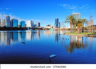 Orlando Lake Eola in the morning with urban skyscrapers and clear blue sky with swan.