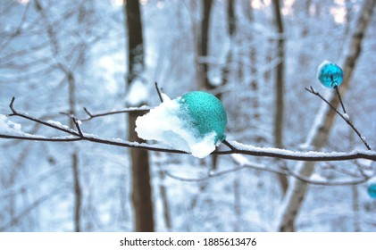 An ornament on a tree branch in Toronto after snowfall. Snow clings to the trees and transforms the scene into a winter wonderland. Taken on Christmas Day.