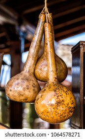 Ornamental gourds (Long Dipper Gourd) Cucurbitaceae family , in a Cyprus village,