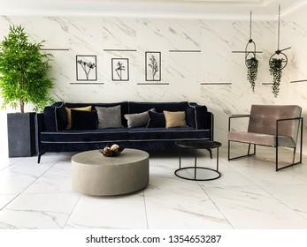 Ornamental plants black sofa in residential building.
