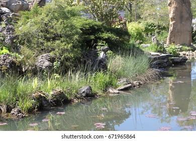 Ornamental pond in the Park