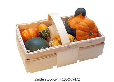 ornamental pumpkin on white