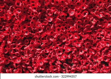 Ornamental Red Poppies of Remembrance