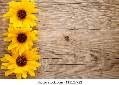 Ornamental sunflowers on wooden background