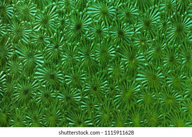 Ornate green glass - detail of the surface - glass texture - patterned glass