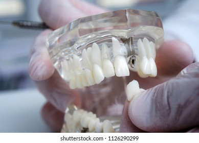 Orthodontists Images, Stock Photos & Vectors   Shutterstock