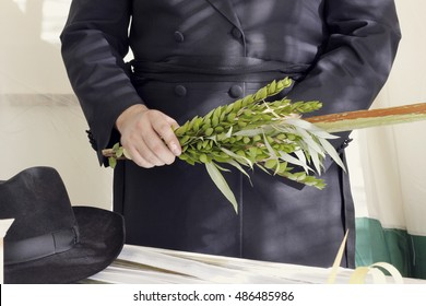 Orthodox hasidic Jew performing the commandment of taking of the Four Kinds on Sukkot holiday.