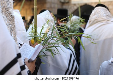 Orthodox Jewish men pray with Tallit (prayer shawl) in front of wall with their Lulav (hebrew for Palm Leaves) and Etrog (Hebrew for citron fruit) on the holiday of Sukkot
