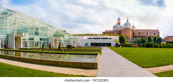 Orto Botanico di Padova ( Botanical Garden of Padua), Unesco Heritage Site in Italy and the Santa Giustina cathedral in background (Padua, Italy, 24 Apr 2017)