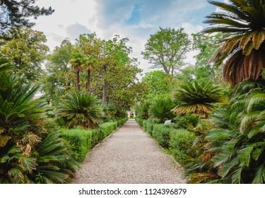Orto botanico di Pisa (Orto Botanico dell Universita di Pisa), the oldest university botanic garden in the world, Tuscany, Italy
