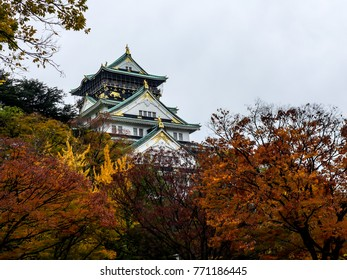 Osaka castle among the red trees in the autumn