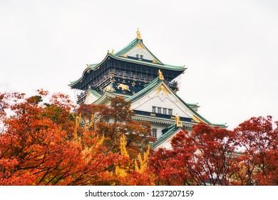Osaka castle in autumn, shot in Osaka, Japan.