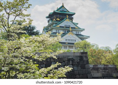 The Osaka castle behind a blooming Cherry blossom tree