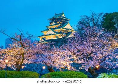 Osaka Castle with full bloom of Sakura in Japan