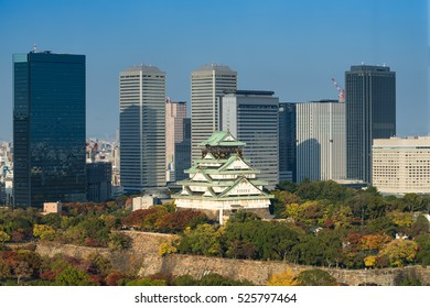 Osaka castle in late afternoon sun light and building background