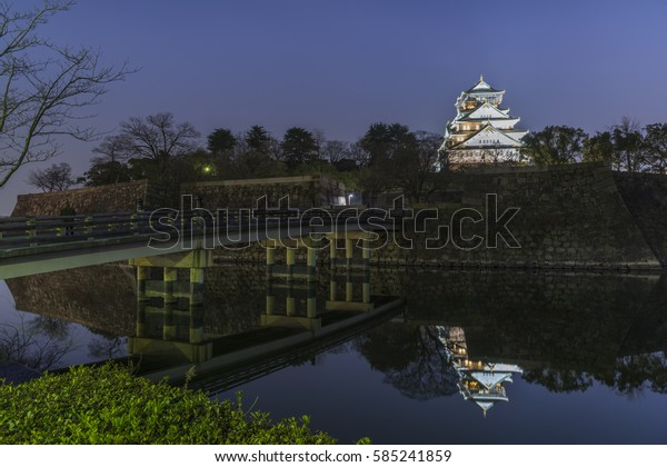 the Osaka Castle in the Night, Japan