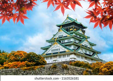 Osaka Castle in Osaka,Kansai,Japan in Fall or Autumn season. Maple tree are turn into red and orange leaf. There are red leaf in foreground.It is one of most famous landmark in Japan
