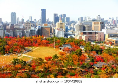 Osaka Castle Park in autumn, afternoon