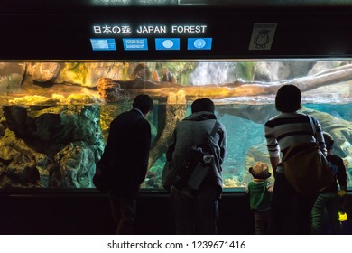 OSAKA, JAPAN - NOVEMBER 10, 2018: The Osaka Aquarium Kaiyukan is an aquarium located in the ward of Minato in Osaka, Japan, near Osaka Bay. It is one of the largest public aquariums in the world.
