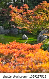 Osaka, Japan - November 17, 2018: Japanese garden of Expo'70 commemorative park in autumn, shot in Osaka, Japan.