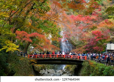 OSAKA, JAPAN -NOVEMBER 25, 2018: Mino waterfall full of tourists take photo in Autumn season Red Maple Leaf Fall Foliage, Minoo (Minoh or Mino) it is one of the best places in the Kansai, Osaka, Japan
