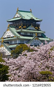 Osaka/Japan-2018.03.29: Osaka Castle with cherry blossom in Spring