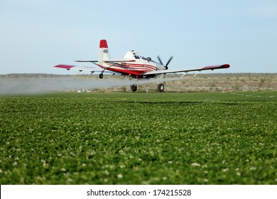 OSGOOD, IDAHO - JULY 19, 2012 An agricultural crop duster flies low over potato field, spraying for late blight.