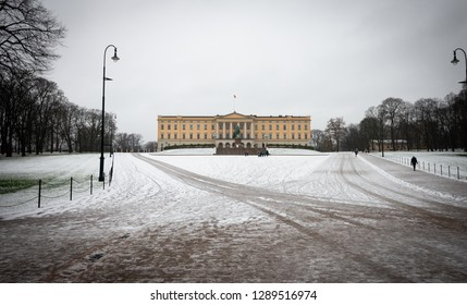 Oslo / Norway - November 29 2018 : Tourist are travel to visit at the Royal Palace in the winter