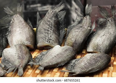 Osphronemidae. T. trichopterus. dried salted damsel fish. Dry leaf fish. Thai food processing. Thai food. Thai fish.