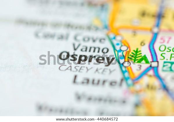 Osprey. Florida. USA