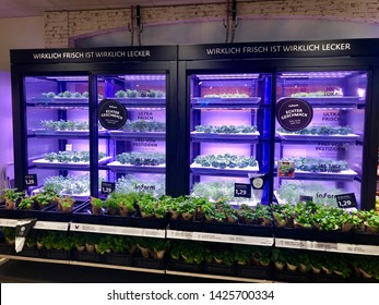 Ostfildern-Bernhausen, Germany - June 15, 2019: The instore and indoor greenhouse within the supermarket Gebauer in Germany is producing herbs and salads that are freshly sold to the customer. New