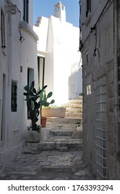 Ostuni The White City (BR) Italy