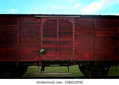 Oswiecim / Poland; 11/11/2016. Auschwitz-Birkenau concentration camp. Red train carriage in the concentration camp of Auschwitz-Birkenau with a red rose on the door in Oswiecim.