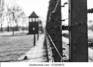 OSWIECIM, POLAND - NOVEMBER 23, 2015: Barbed wire in Auschwitz II Birkenau, the biggest nazi concentration camp in Europe and now the State Museum Auschwitz-Birkenau, Oswiecim, Poland