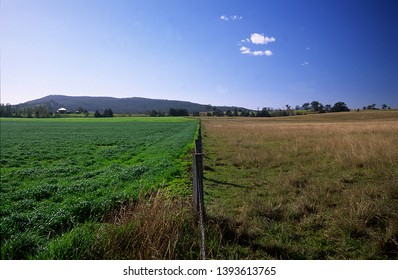 The other man's grass is always greener. Vacy. Australia.