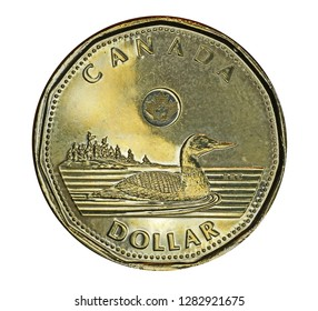 OTTAWA - JANUARY 2019:  Canada's one dollar coin features a loon, a common waterfoul in Canada's wilderness areas.