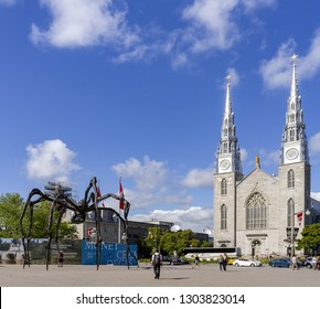 Ottawa, Ontario - June 28, 2018: Notre Dame Cathedral Basilica Otawa and Maman spider scuplture in Ottawa, Canada