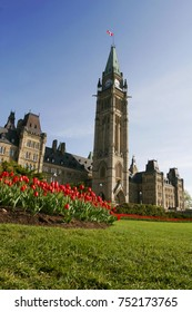 Ottawa Parliament with red tulip. Canadian tulip festival is a tulip festival, held annually in May in Ottawa, Ontario, Canada. The world's largest tulip festival.