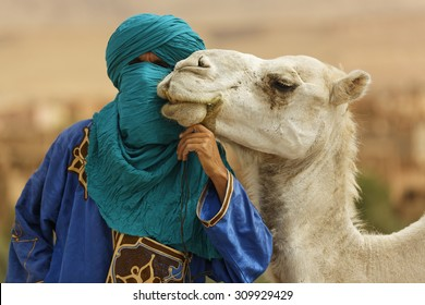 Ouarzazate, Morocco - July 31, 2015 : Unidentified Berber dressed his traditional clothes and turban and keeps the camels bit