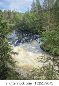 Oulanka river and the fast-moving rapids at the Oulanka National Park in Kuusamo, Finland. Green forest framing the flowing water. Finnish nature on a beautiful, sunny summer day perfect for hiking.