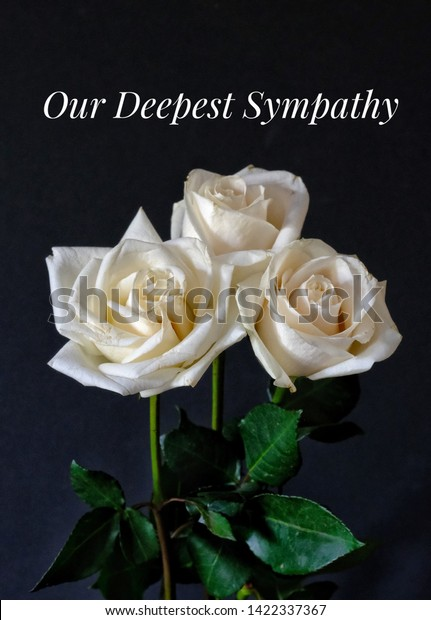 Our Deepest Sympathy Card Message On Stock Photo Edit Now