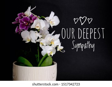 Our Deepest Sympathy card. Purple and white orchids in white pot with black background and text