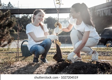 Our nature. Cheerful pretty nice girl holding a tree and looking at the women while helping to plant it