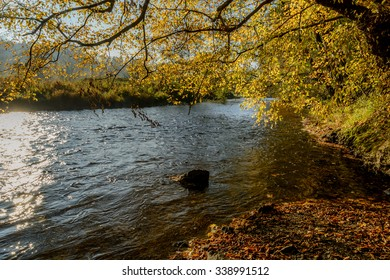 Ourthe river in Belgian Ardennes in autumn