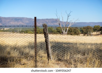Outback fence with a field in front of the Mount Arapiles, north west of the Grampians national park in Victoria Australia