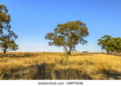 outback highway dry landscape