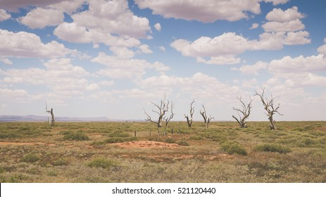 Outback landscape in the Flinders Ranges, South Australia