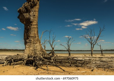 Outback South Australia , Yacto Lagoon dries up in the searing Summer temperatures