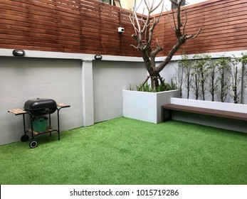 Outdoor Backyard